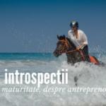 Introspectii cu maturitate despre antreprenoriat