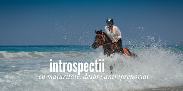 Introspectii cu maturitate despre antreprenoriat Introspectii   cu maturitate, despre antreprenoriat